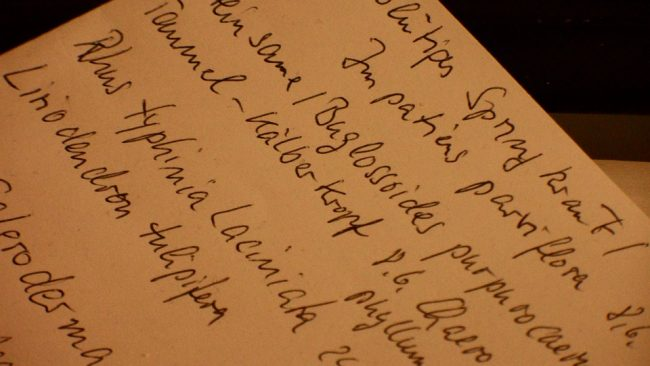 Power of the Handwritten Note